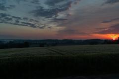 DSC05093 (jensmischl) Tags: sony a6300 coesfeld sonnenaufgang sonnenuntergang sonne landschaft deutschland 3 linden coesfelder berg nrw 18105 18 105 f 4