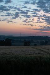 DSC05033 (jensmischl) Tags: sony a6300 coesfeld sonnenaufgang sonnenuntergang sonne landschaft deutschland 3 linden coesfelder berg nrw 18105 18 105 f 4