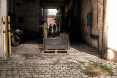 À la recherche du champ perdu (Jean-Marie Lison) Tags: x100t bruxelles anderlecht ancienneimprimerieasar entrepôt porte pavés bac couloir hdr