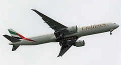A6-EGD EMIRATES BOEING 777 NEWCASTLE (toowoomba surfer) Tags: jet aeroplane aviation aircraft airline boeing airliner ncl b777