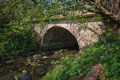 Bridge over water (kenthys012) Tags: arch plant connection bridge manmadestructure tree nature forest nopeople day water growth transportation outdoors land wall brick arched green