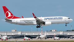 Turkish Airlines Boeing 737-800 TC-JGY | Milano - Malpensa (MXP-LIMC) | 31st May 2019 (Brando Magnani) Tags: