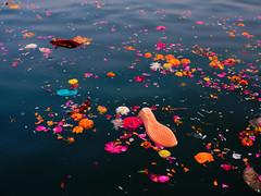 Sangam. (Prabhu B Doss) Tags: prabhubdoss fujifilm fuji fujilove fujifeed kumbh mela kumbhmela sangam ganga yamuna saraswathi travel uttarpradesh prayagraj