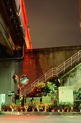 Underpass velvia glory (ross.mccarry) Tags: taipei taiwan fuji 35mm film velvia kodak ektar asia nikon voigtlander 58mm