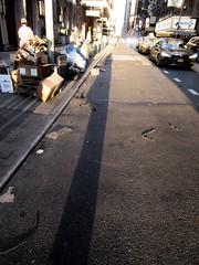 Evening Shadow Portrait Holding Bags on 49th Street NYC 1252 (Brechtbug) Tags: evening shadow portrait 49th street 8th avenue new york city 2019 selfie i guess nyc long leg shadows legged stilt man looking sidewalk ave st