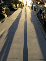 Evening Shadow Portrait Holding Bags on 49th Street NYC 1228 (Brechtbug) Tags: evening shadow portrait 49th street 8th avenue new york city 2019 selfie i guess nyc long leg shadows legged stilt man looking sidewalk ave st
