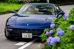 Ferrari 456GT (Scuderia Blue) Tags: ferrari456gt ferrari ferrari456