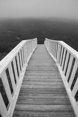 Staircase In The Clouds (peterkelly) Tags: digital bw northamerica canon 6d newfoundlandlabrador canada newperlican sugarloaf railing wooden steps staircase stairway foggy fog