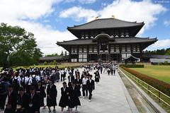 奈良・東大寺大仏殿 ∣ Todaiji Temple・Nara city (Iyhon Chiu) Tags: 日本 奈良 nara japan japanese 大仏殿 東大寺 奈良公園 buddhist todaiji temple