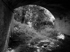 Under a disused railway bridge (a.pierre4840) Tags: panasonic lumix gm1 micro43 14mm f25 bw blackandwhite noiretblanc bridge chair shadow abandoned derelict decay ruined railway dorset england