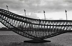 Python Bridge (sowhat63) Tags: amsterdam python bridge brücke