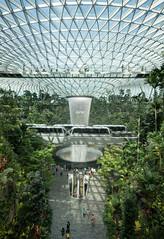 20190616-DSC05542 (Inno'vision) Tags: jewel changiairport jewelchangi indoor garden rainvortex canopypark singapore scape waterfall