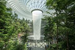 20190616-DSC05515 (Inno'vision) Tags: jewel changiairport jewelchangi indoor garden rainvortex canopypark singapore scape waterfall