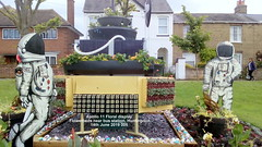 Apollo 11 Floral display  Flowerbeds near bus station, Huntingdon 14th June 2019 005 (D@viD_2.011) Tags: apollo11floraldisplayflowerbedsnearbusstation huntingdon14thjune2019