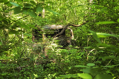 Over Grown (jkotrub) Tags: summer sunshine fun light golden goldenhour outside outdoors morning devilslake woods trees abandoned old decay