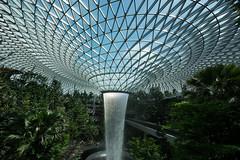 20190616-DSC05528 (Inno'vision) Tags: jewel changiairport jewelchangi indoor garden rainvortex canopypark singapore scape waterfall