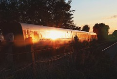 Train of gold (erlingraahede) Tags: angle train sun gold fast street holstebro denmanrk vsco light canon