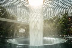 20190616-DSC05507 (Inno'vision) Tags: jewel changiairport jewelchangi indoor garden rainvortex canopypark singapore scape waterfall