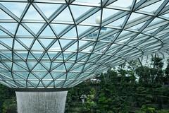 20190616-DSC05810 (Inno'vision) Tags: jewel changiairport jewelchangi indoor garden rainvortex canopypark singapore scape waterfall