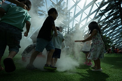 20190616-DSC05915 (Inno'vision) Tags: jewel changiairport jewelchangi indoor garden rainvortex canopypark singapore scape waterfall