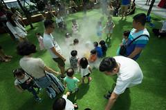 20190616-DSC05909 (Inno'vision) Tags: jewel changiairport jewelchangi indoor garden rainvortex canopypark singapore scape waterfall