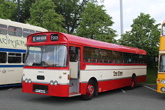 The Eden L14 / PPT 446P (TEN6083) Tags: transport bus buses publictransport nebuses