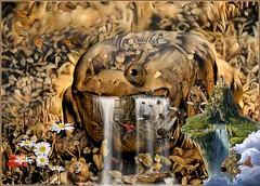 Kingdom of Le Frog (PaulO Classic. ©) Tags: tt photoshop picmonkey fantasy ddg deepdream