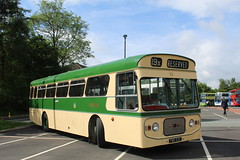 Sunderland Corporation Transport 53 / FBR 53D (TEN6083) Tags: transport bus buses publictransport nebuses