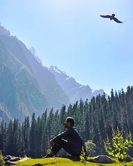 Mountains have always given me a feeling of Free bird to me. . Mountain Diaries-02 In-frame- @gmik_26 . what are your thoughts on this one? . Do comment and let me know! ✌️ . . #pulpkeyxyou #indianvisuals #moodyindia #minimalist #theuncommonbox #india_cl (RohanShah1127) Tags: ifttt instagram mountains have always given me feeling free bird mountain diaries02 inframe gmik26 what your thoughts this one do comment let know ✌️ pulpkeyxyou indianvisuals moodyindia minimalist theuncommonbox indiaclicks lookslikeafilm reflectiongram nustaharamkhor manali visualsofindia clickshotindia ngtindia maibhisadakchap mypixeldiary inspiroindia soc5 photofie himachalpradesh theglobewanderer minimallookup wphofficial manalidiaries tripotocommunity minimalism lonelyplanetindia himachalpictures cnntravel exploroshan ononefineday