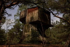 Watch tower. (Marek Szumko) Tags: bunker artilery concrete hel peninsula forest military watchtower poland