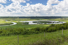 Week 24 of 52 - 2019 (Don Arsenault) Tags: landscape canada camrose clouds canoneos5dmarkiii canonef2470f28lii donarsenault alberta scenery sky scenic green field water fence