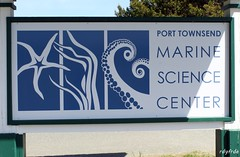 IMG_6506 (rdyfrde) Tags: fortworden porttownsend statepark