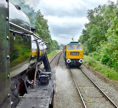 "Great Central Railway Swithland Leicestershire 16th June 2019 (loose_grip_99) Tags: central railway gcr railroad rail train great greatcentral steam engine locomotive lms stanier 8f 280 48624 leicestershire eastmidlands england uk preservation transportation gassteam uksteam trains railways swithland sidings class47 brush diesel passing gwr semaphore signals june 2019 1705 ""sparrowhawk"" transition"