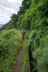 Sacking and staff (Photos taken with Sony mirrorless cameras) Tags: madeira lavada canal irrigation hillside island man sacking walking path greenery