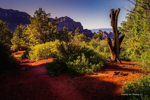 Digital Oil Painting of an Arizona Desert Sunrise by Charles W. Bailey, Jr.
