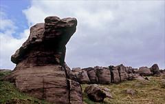 big nose (Ron Layters) Tags: rock tor shapes weathering sandstone bridestonesmoor almostgritstone moor amazingshapes bridestones rocks calderdale todmorden westyorkshire england unitedkingdom highpeak slidefilmthenscanned slide transparency fujichrome velvia leica r6 leicar6 ronlayters