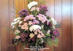 Trinity Free Church - Flower arrangement in the Sanctuary 16th June 2019 002 (D@viD_2.011) Tags: trinity free church flower arrangement sanctuary 16th june 2019
