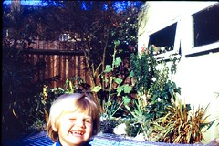 532_KeithWright1971 (wrightfamilyarchive) Tags: keith wright summer 1971 1970s 70s seventies beckenham garden cromwell road