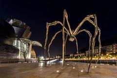 Una araña en el museo (Txaro Franco) Tags: araña gigante giant museo museum guggenheim museoa bilbao bizkaia vizcaya bilbokogauzuria2019 nocheblancadebilbao2019 noche blanca gau zuria escultura armiarma spider 14mm