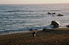 Evening, Moonstone Beach (bingley0522) Tags: contaxiia zeissoptonsonnar50mmf20 kodakcolorplus200 centralcoast california coastalcalifornia cambria moonstonebeach eveninglight autaut