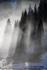 Magico Altopiano (silvano fabris) Tags: mountain montagna nebbia alberi canonphotography photonature nature landscape paesaggio