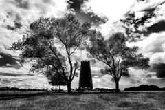Black Mill, Beverley (Mike Brown MW) Tags: black mill beverley westwood east yorkshire england trees sky clouds white blackwhite blackandwhite panasonic lumix tz 200