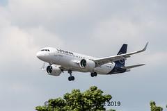 Airbus A320neo Lufthansa-2 (Stephan Dannigkeit) Tags: airbus a320neo a 320 neo lufthansa txl ber dainr d ainr landau der pfalz