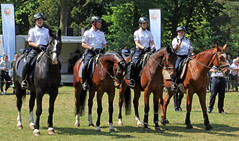 Mounted police (Schwanzus_Longus) Tags: delmenhorst german germany mounted police law enforcement horse polizei