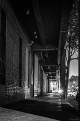 Alley at night (Claus Preuschoff) Tags: blackwhite highcontrast d750 beijing streetphotography street nightscapes nightphotography