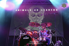 animals-leaders-barcelona6 (metal.symphony) Tags: animals leaders car bomb lee mckinney djent progressive metal hardcore new york madness live sala salamandra