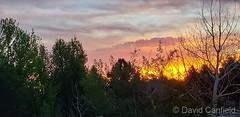 June 14, 2019 - A beautiful sunrise in Broomfield. (David Canfield)