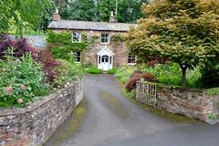 Cumbrian Cottage (Adam Swaine) Tags: cottage cottagegarden villagecottage englishcottage cumbria england english englishvillages northeast uk ukvillages ukcounties counties countryside beautiful county