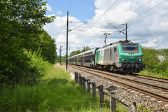 Prima et tronçon TGV (Marc_135) Tags: bb27000 bb27031 fret tgv tgvduplex prima voujeaucourt soleil train rail vert valenton mulhouse
