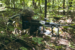 2nd Regiment, Advanced Camp conduct Situational Training Exercises (STX) (armyrotcpao) Tags: cst2019 2ndregiment advancedcamp armyrotc cadet cadets defense ftx fortknox kentucky rotc stx cadetsummertraining teamwork training